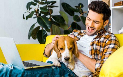 Pet Friendly Rentals Adelaide